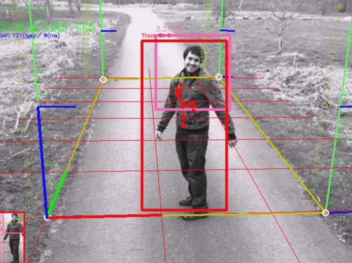 Pedestrian Detection System